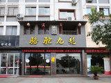 骆驼九龙砖茶招商加盟信息