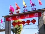 """大益勐海茶厂80周年庆典""""线上回家""""活动启动!参与有机会赢走「千羽孔雀」"""