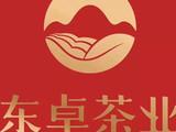 东卓茶业:山花烂漫即将时,我们相约丛中笑