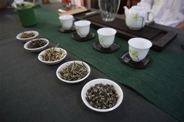 中国茶叶博物馆品鉴会一杯行走的福州茉莉花茶