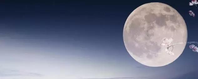 月是故乡明茶是凤牌醇