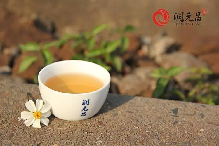【藏茶须知】四个要点让你的存茶更有价值!