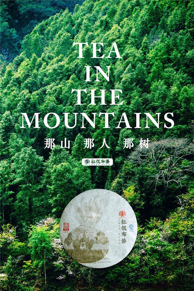 拉佤布傣丨那山,那人,那树,那个熟悉的味道