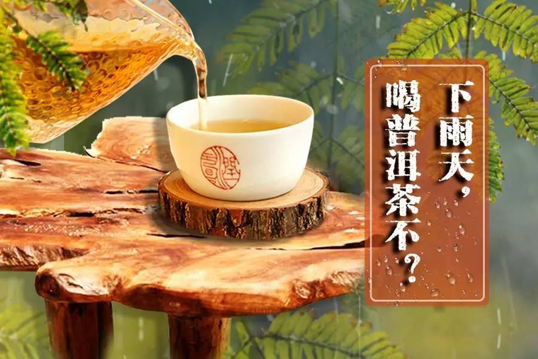 听说下雨天泡普洱茶不好喝?你怎么看?