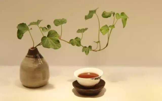 普洱茶膏另类喝法:茶膏除了喝竟然还可以这样玩?