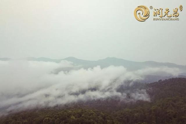 山顶的春天中国简谱网