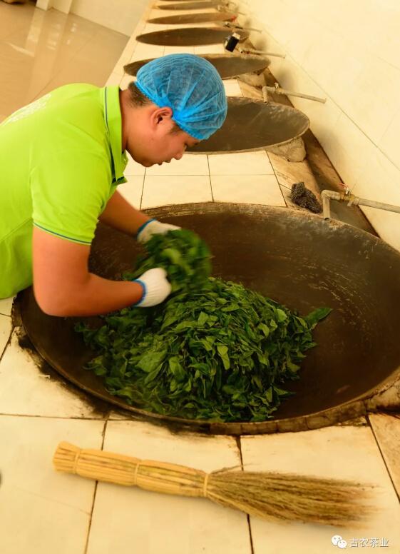 2018普洱茶价格,2018普洱茶批发,普洱茶的功效与作用,