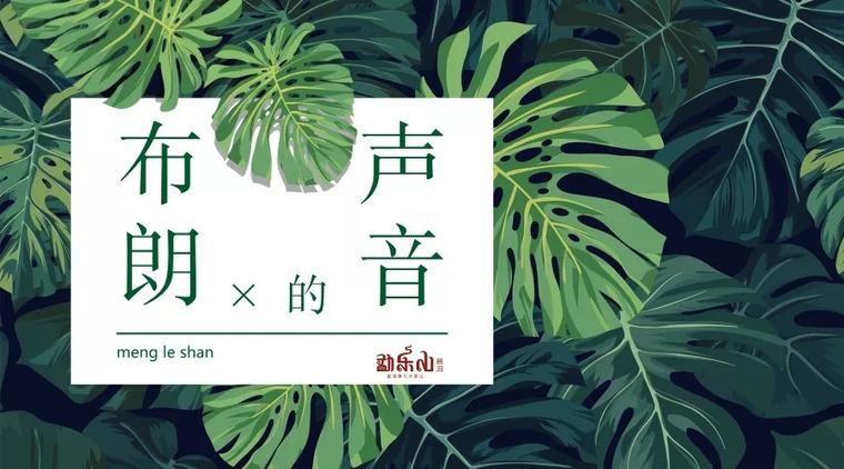 勐乐山2018年七大茶山第二款布朗山即将上市!