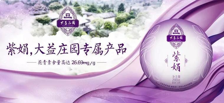 靛紫透亮,花香扑鼻 | 解密大益稀有茶品「紫娟」