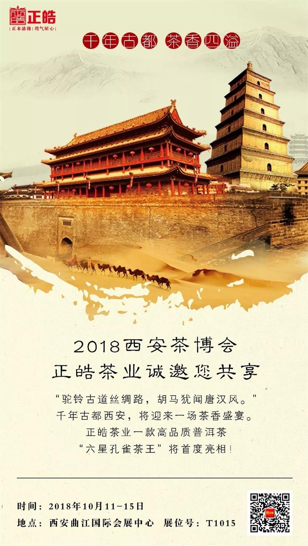 西安茶博会盛大开幕,正皓六星孔雀茶王受到热捧