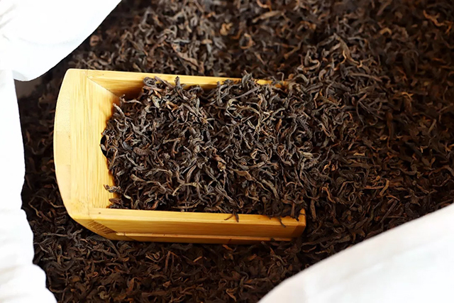 501三级熟散茶预告形散之态,转化更快,日常品饮的精品好物