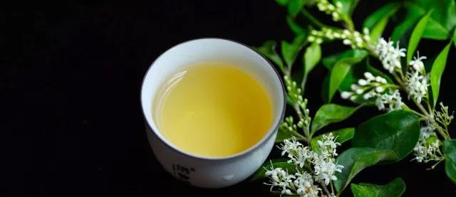 """喝普洱茶容易饿,是因为""""刮油""""吗?"""