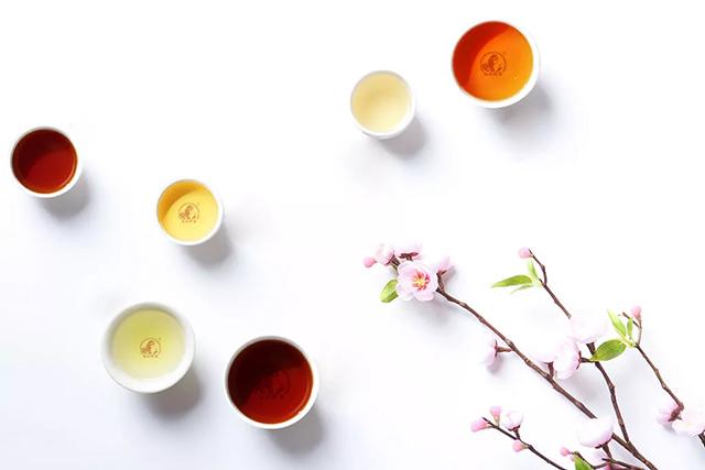 佤山茶学堂茶滋味,舌知道