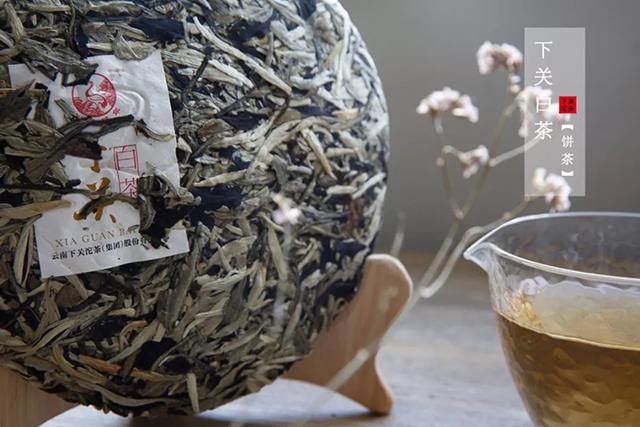 【新品】爱茶,爱白茶,遇上下关白茶!