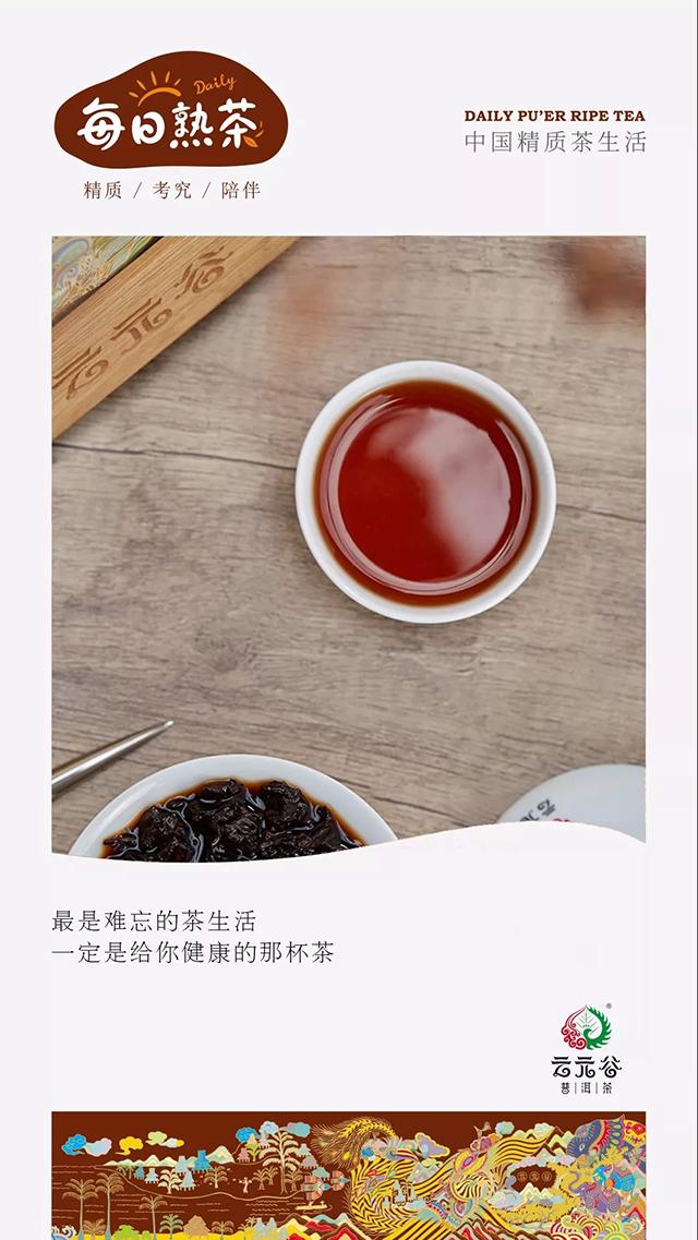 每日熟茶:熟茶特有的保健物质