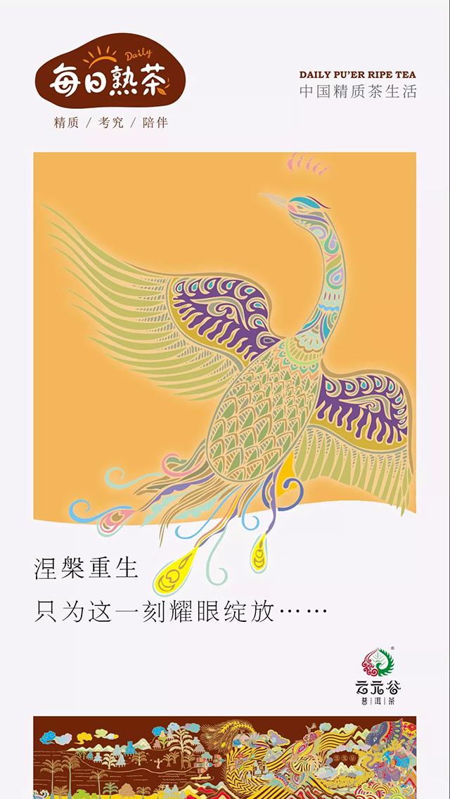 云元谷:老曼峨、班章熟,这些顶级熟的特征是什么?