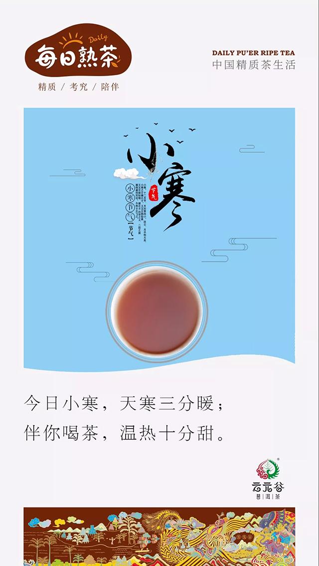 云元谷:为什么市面上的熟散茶这么少?