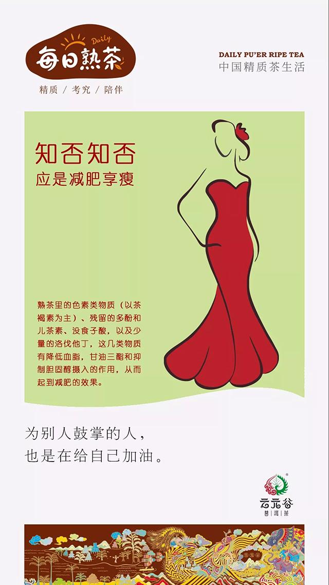 云元谷:到底熟茶能不能减肥?