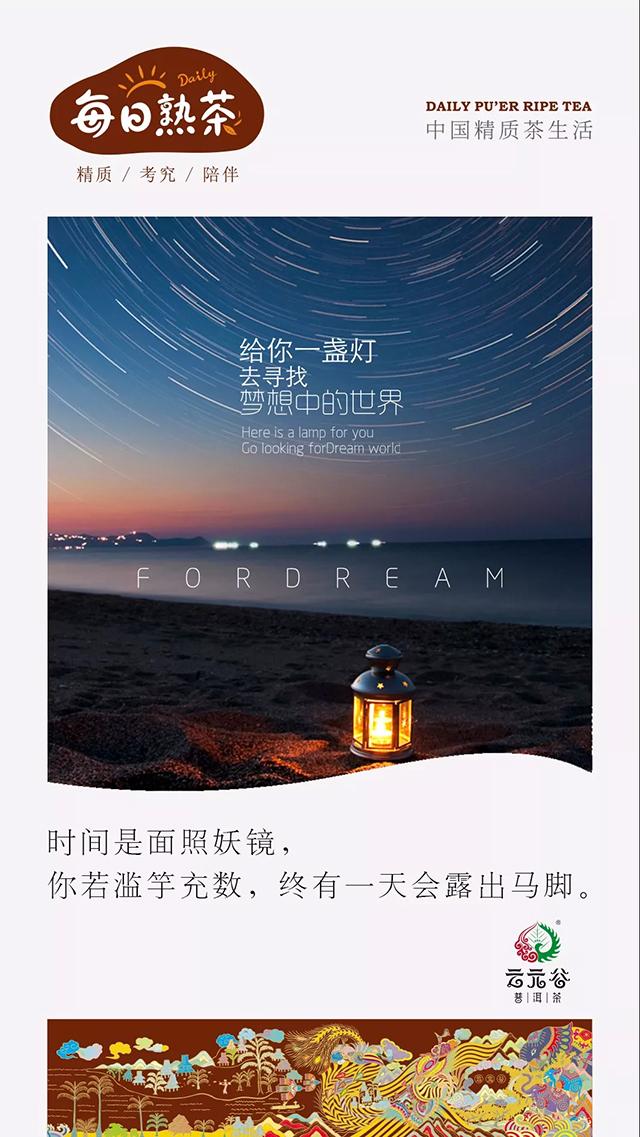 云元谷丨家庭普洱茶存放
