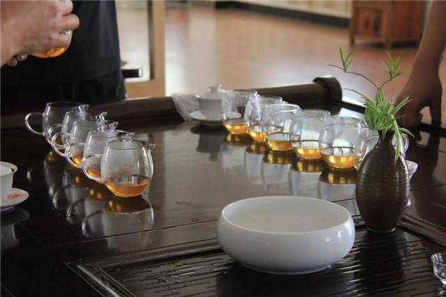 【勐海厂品鉴会】秋意正浓,宜饮老茶