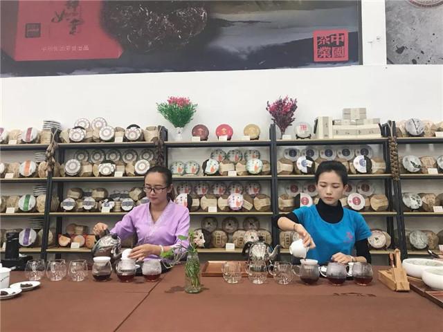 【版纳茶仓品鉴会】智者茶为伴
