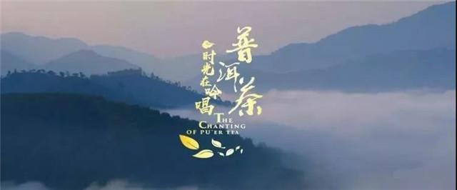 时间的重量——从晒青到拼配,阮殿蓉讲述普洱茶的成长历程