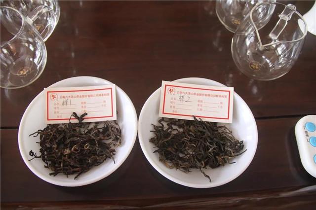【勐海厂品鉴会】一盏茶的时光,品意境之美