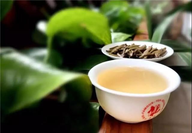 【茶百科】如何去辨别普洱茶好坏?