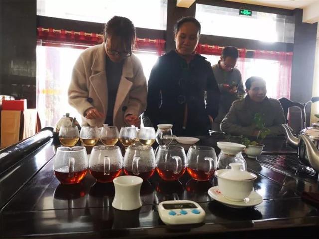 【勐海茶厂品鉴会】冬日品茶,一生一熟,更显茶中滋味