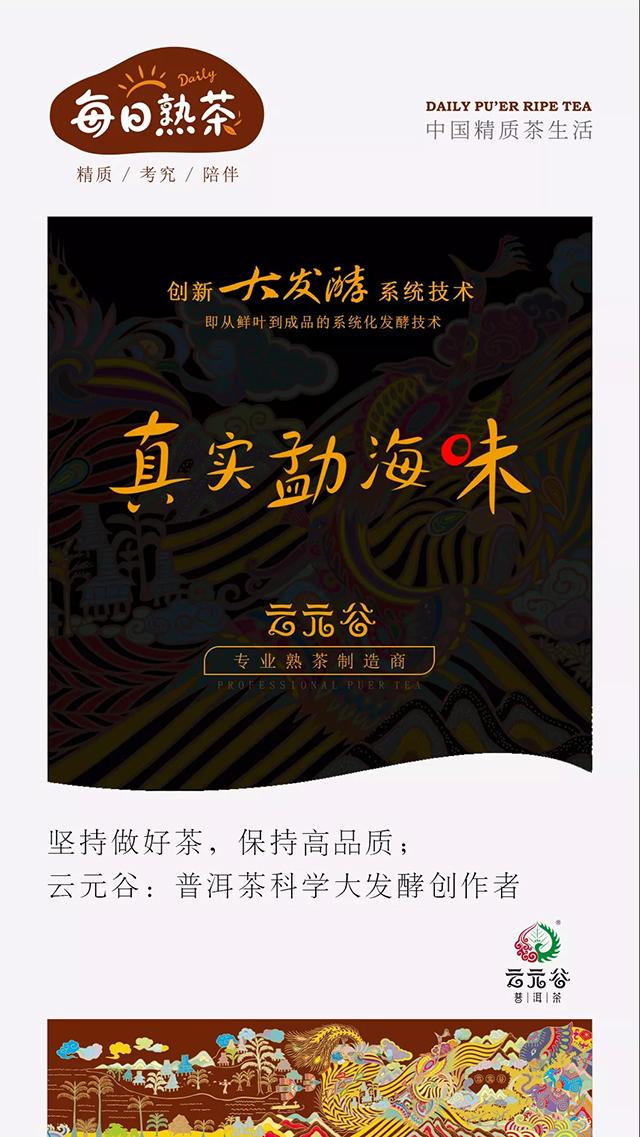 """云元谷每日熟茶丨""""普洱茶·大发酵""""解读"""