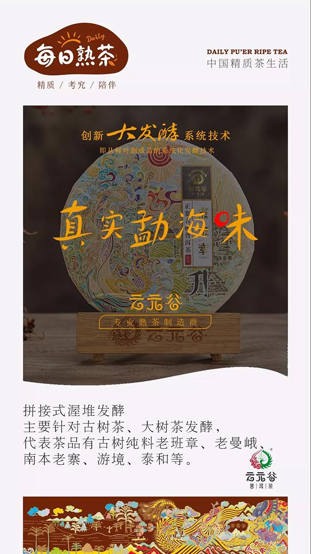 """云元谷每日熟茶丨""""大发酵""""之【拼接式渥堆发酵工艺】续"""