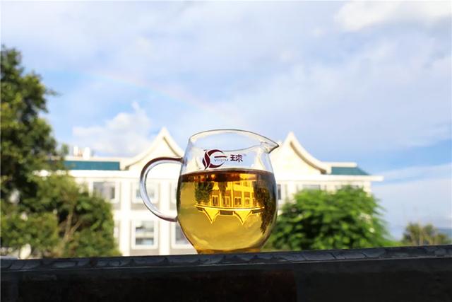 一球茶业的夏日清凉法宝,普洱茶冷泡