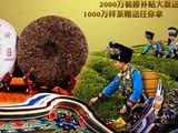 龙生茶业加盟信息
