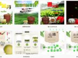 润盛潭茶业加盟信息