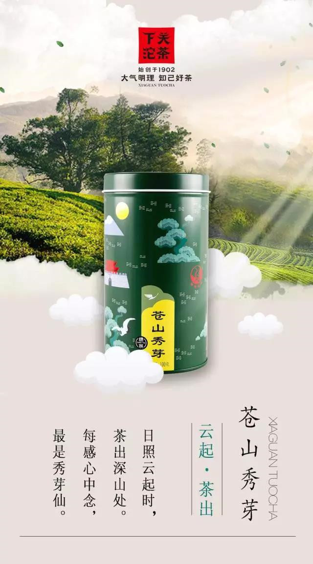 日照云起,下关苍山秀芽绿茶