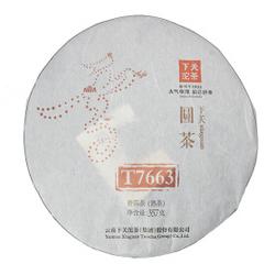 Jin Yin T7663