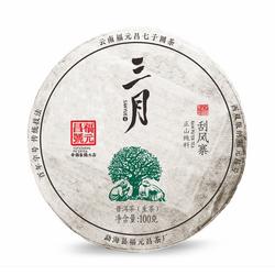 福元昌2019年春茶三月刮风寨100克生茶【特惠预售中】