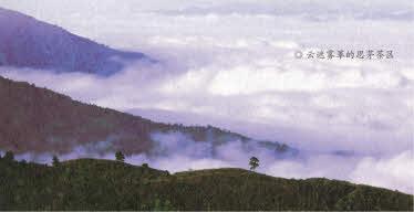 云遮雾绕的思茅茶区