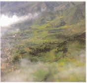 高空俯瞰临沧茶区