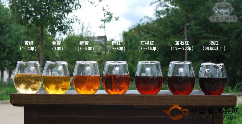 中国普洱茶网教你如何品饮普洱生茶(入门篇)