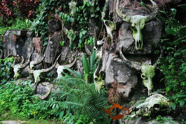 基诺山寨原始秘境 感受神秘的基诺文化