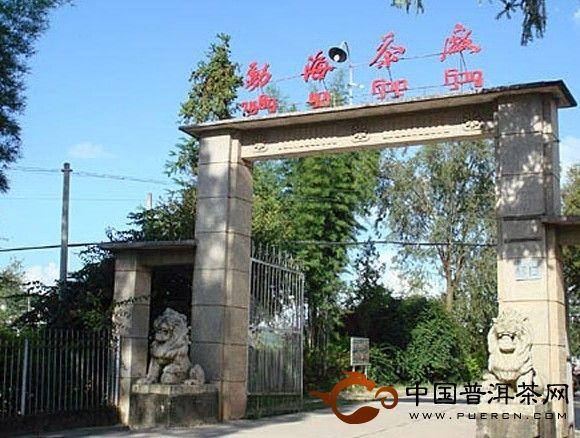 云南勐海茶厂