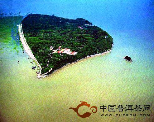 湖南君山茶场