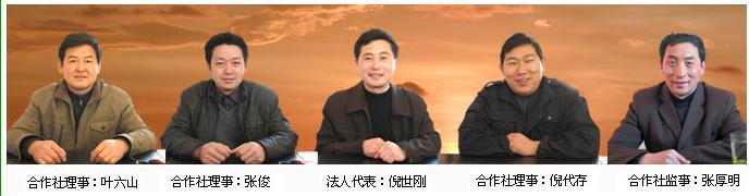 岳西绿剑茶叶专业合作社社