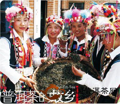 海湾茶业勐海玉寿山、帕沙山原料基地
