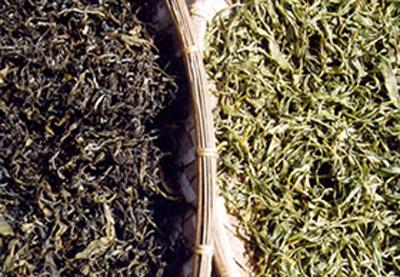 云南普洱茶的传统制作过程