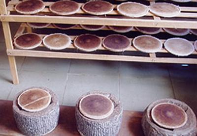 云南普洱茶的制作过程(图文详解)