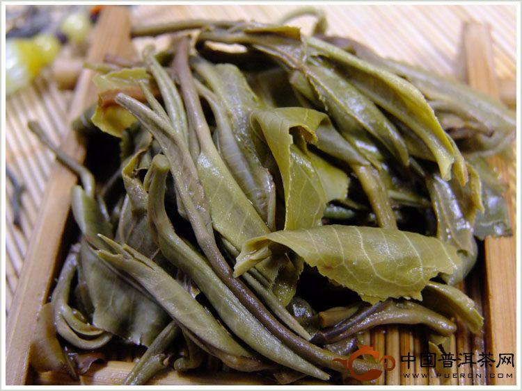 舌尖上的普洱茶 2012老班章