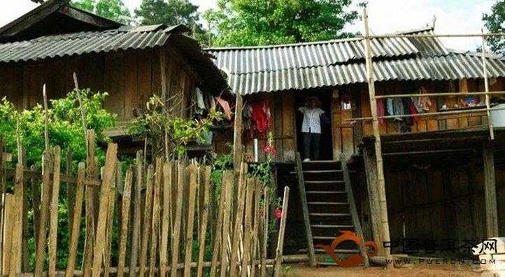 老班章普洱茶产区