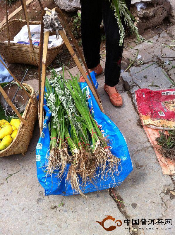 普洱端午节民俗:吃百草根